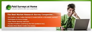 What is Paid Surveys at Home about?